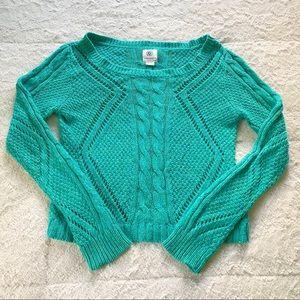 American Eagle Green Sweater